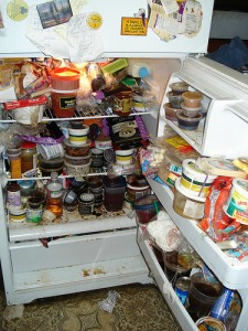 This is NOT my fridge. But it could have been...